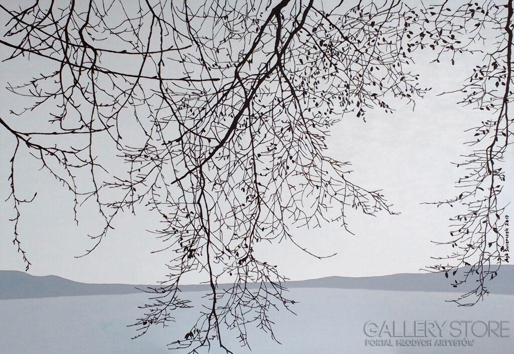 Jezioro we mgle II Agnieszka Świerczek