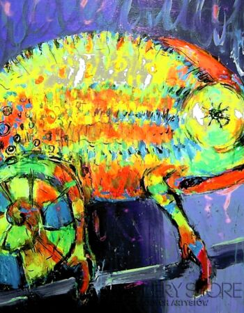 Dariusz Grajek Kameleon...
