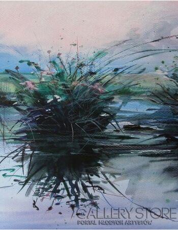 Joanna Sadecka Po deszczu