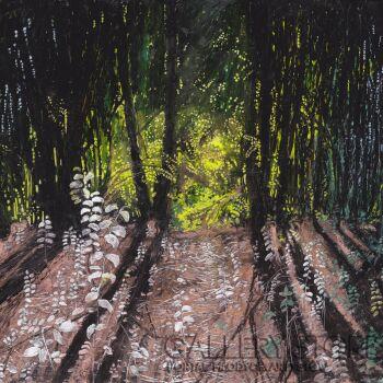 Angelika Mus-Nowak Ukryte w lesie światło
