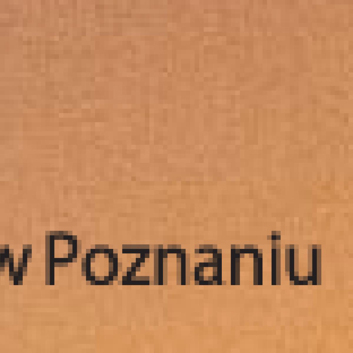Muzem Narodowe w Poznaniu
