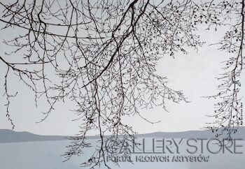Agnieszka Świerczek-Jezioro we mgle II-Akryl