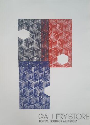 Aleksandra Lisiecka-trzy Kierunki, jeden Cel-Grafika