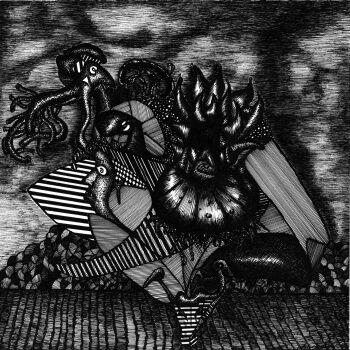 Amadeusz Popek-Kalmary i ośmiornice bywają niebezpieczne-Grafika