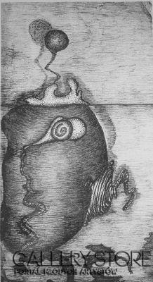 Amadeusz Popek-Kiwi -Grafika