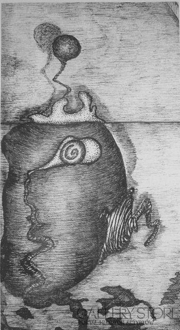 Amadeusz Popek-Kiwi-Grafika