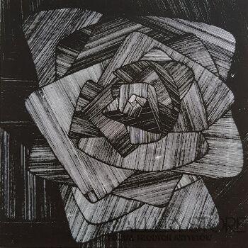 Amadeusz Popek-Róża-Grafika