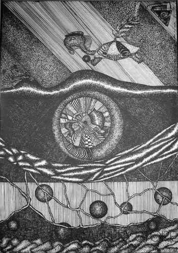 Amadeusz Popek-Żółw-Rysunek