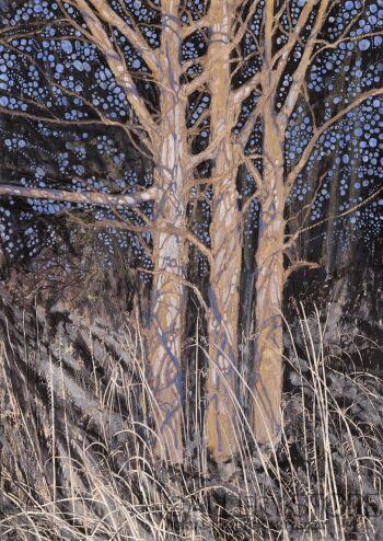 Angelika Mus-Nowak-Drzewa ubrane w cienie swoich gałązek-Rysunek