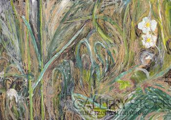 Angelika Mus-Nowak-Nocna rosa na porannej łące-Rysunek