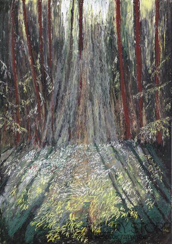 Angelika Mus-Nowak-Wskazane przez słońce leśne obiekty-Rysunek