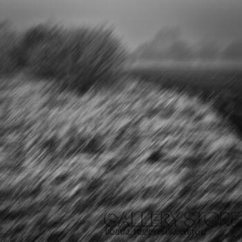 Dariusz Kuźma-I have a dream vol.1-Fotografia