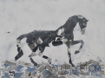 Emilia Gąsienica-Setlak-Dapper III-Akryl