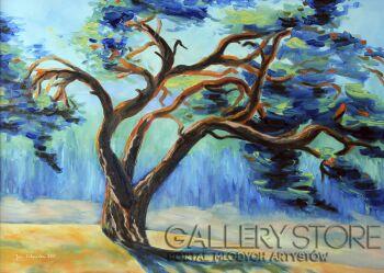 Jolanta Kitowska-Taniec drzew 5-Olej