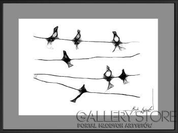 Maja Gajewska-6 - ptaki-Grafika