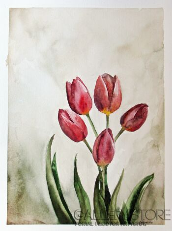 Maria Lewicka-Tulipany 3-Akwarela