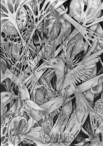 Wiktor Tabak-ptak-Rysunek