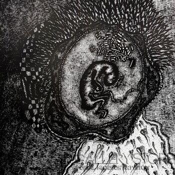 Amadeusz Popek-Alien/embrion-Grafika