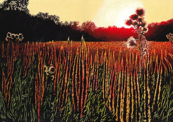 Angelika Mus-Nowak-Płonące trawy-Rysunek