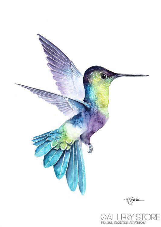 Karolina Kijak-Koliber w locie 3, ptaki, przyroda, natura i zwierzęta w akwareli-Akwarela