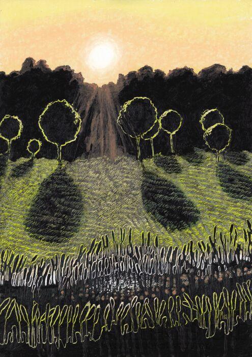 Angelika Mus-Nowak-Cienie kulistych drzew-Rysunek