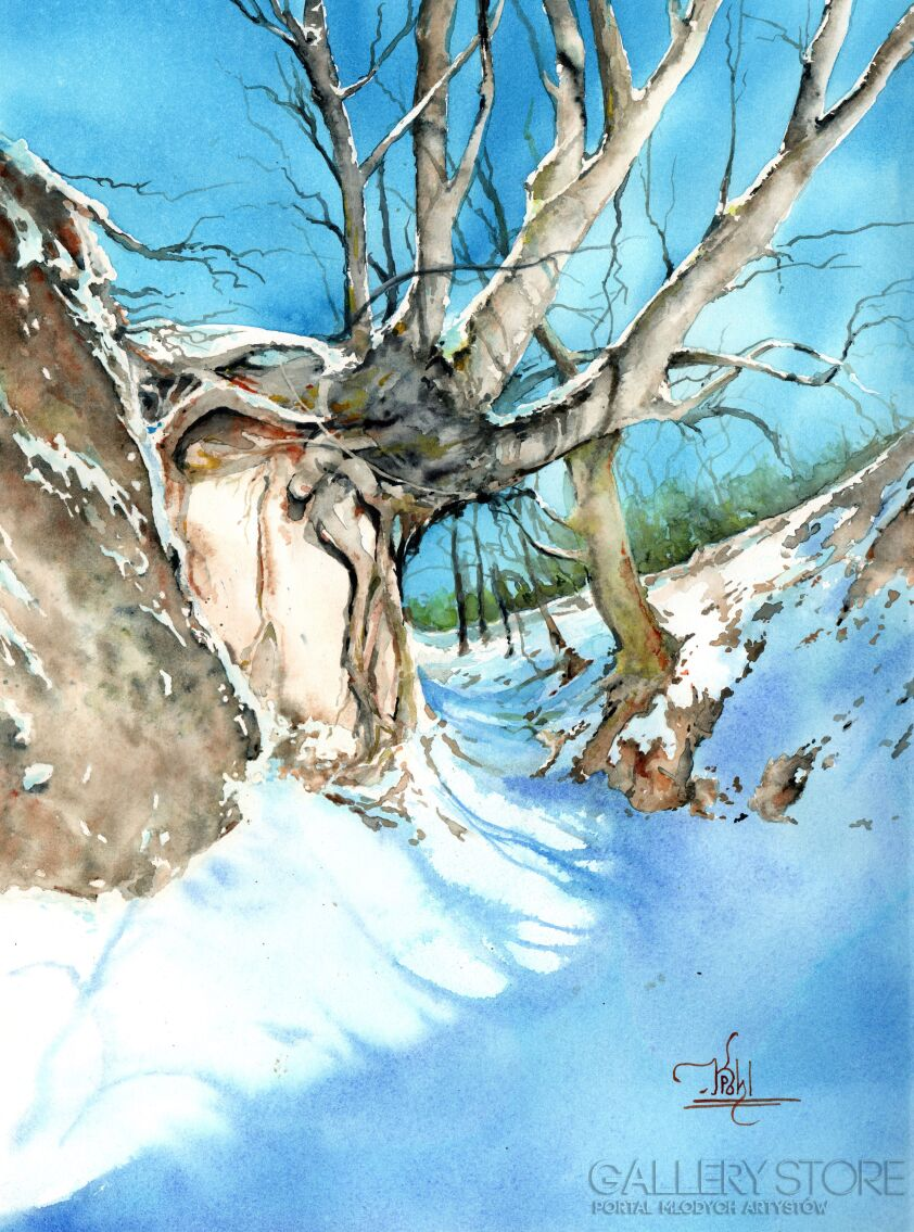 Klaudiusz Pohl-Wąwóz korzeniowy zimą-Akwarela